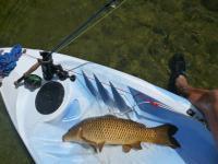 carpe à la mouche en kayak.jpg